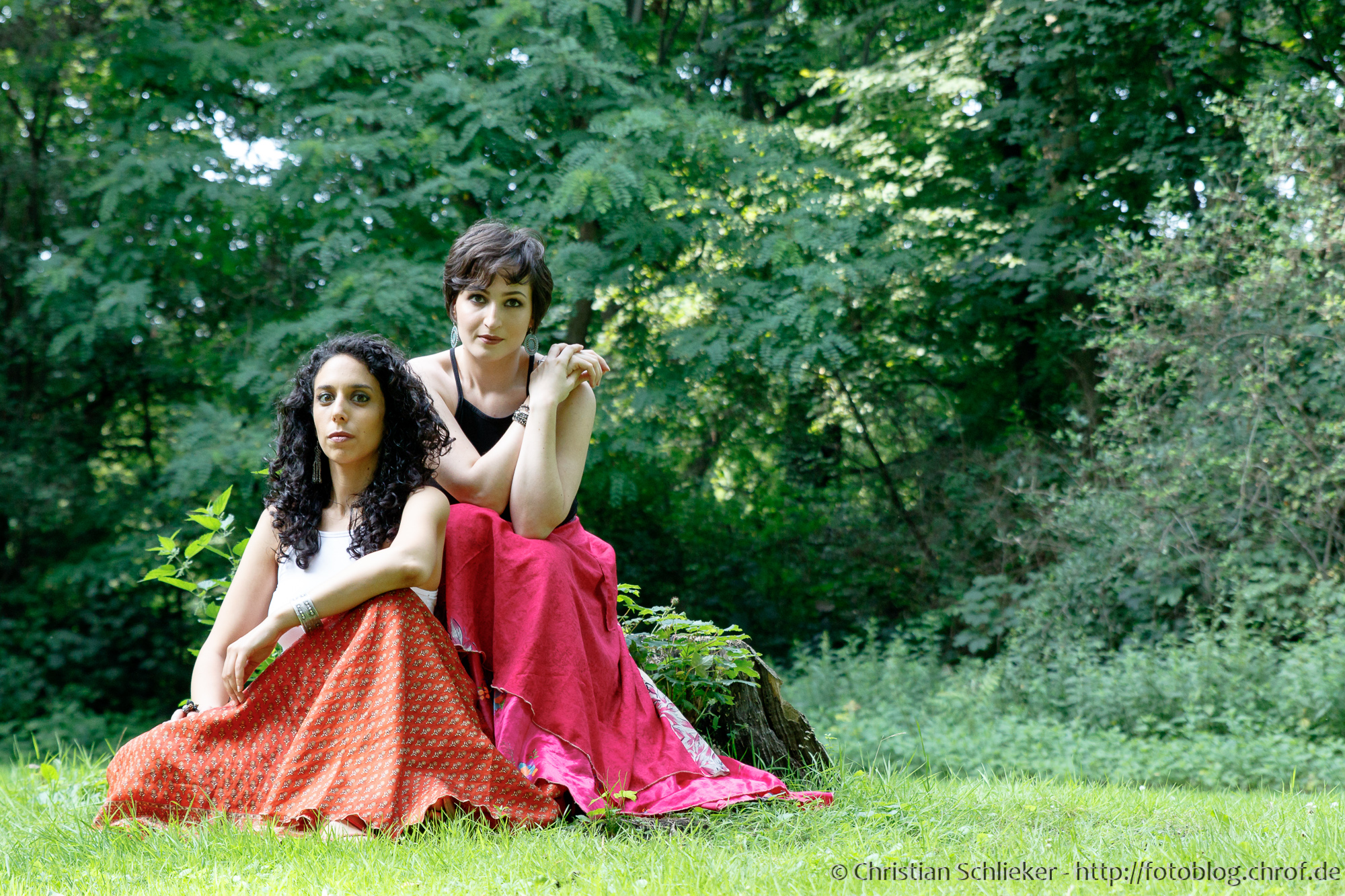 Duo Camellia