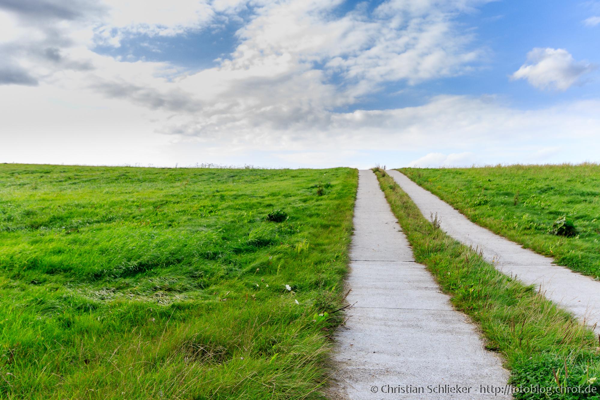 Grüne Wiese mit Weg